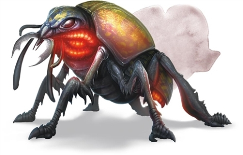 https://forgottenrealms.fandom.com/wiki/Giant_fire_beetle